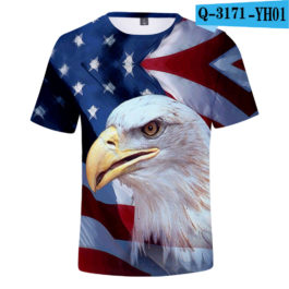 2019 New Independence Day 3D T shirts Men/women Summer Boys/girls Trendy Popular Cauual 3D Independence Day T-shirt Tees v1
