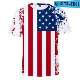 2019 New Independence Day 3D T shirts Men/women Summer Boys/girls Trendy Popular Cauual 3D Independence Day T-shirt Tees v2